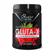 Powerful Progress Gluta-X (500 g)
